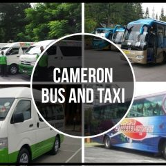 Cameron Bus and Taxi